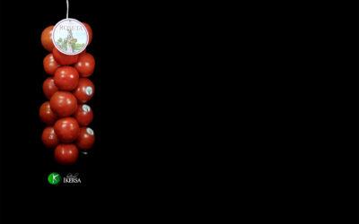 Hortícola Ikersa lider en tomates de colgar